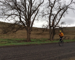 2015 Gran Fondo Ephrata Unicycle on Baird Springs Road